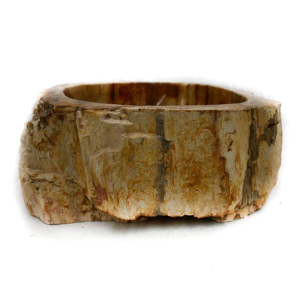 Ovalin de Madera Petrificada (Mediano) 046MP-3040-261