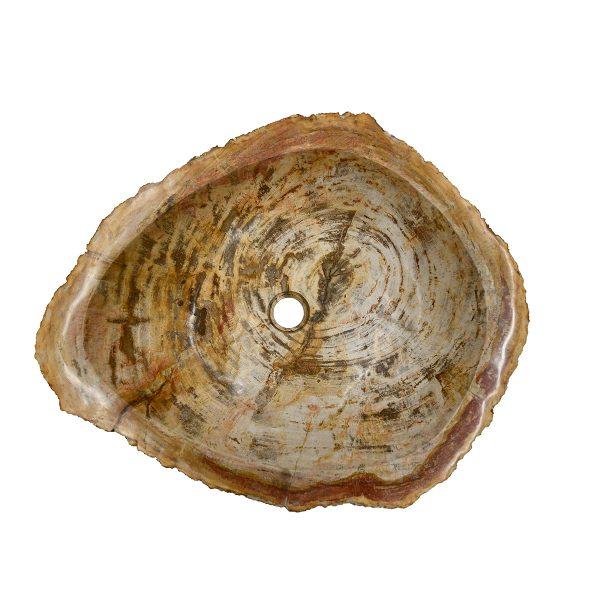 Ovalin de Madera Petrificada 046MP-5060-266