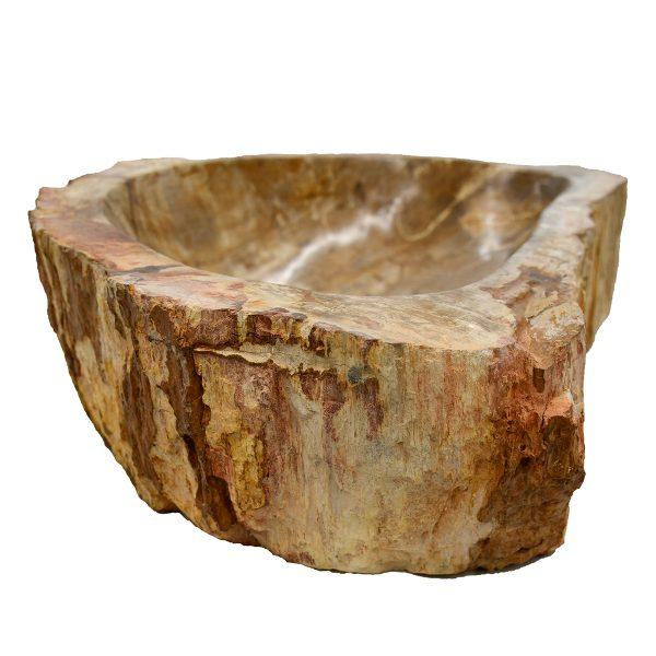 Ovalin de Madera Petrificada 046MP-5060-267