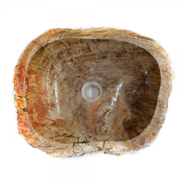Ovalin de Madera Petrificada (Mediano) 046MP-2-206 - SUKABUMI STONE MÉXICO
