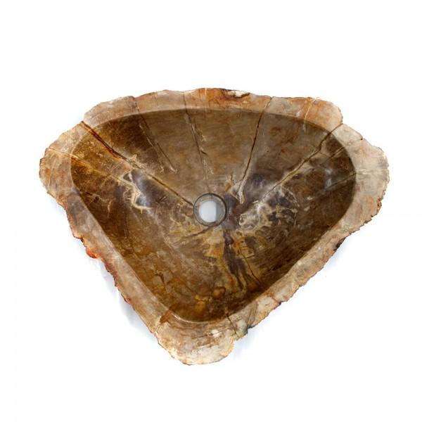 Ovalin de Madera Petrificada (Grande) 046MP-3-208 - SUKABUMI STONE MÉXICO